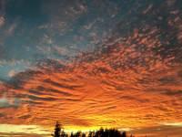 VIews-Gallery---Sunset