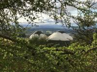 Yurt-Bramble